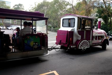 Choo choo train that took us around the zoo