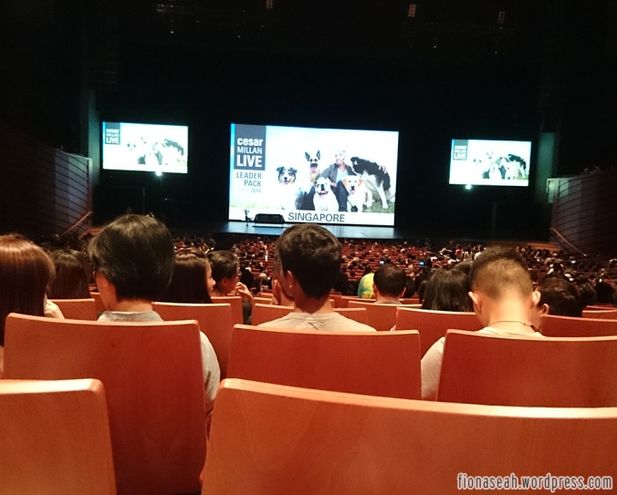 Waiting for the leader of the pack.. (And finally among a pool of younger audience hahaha)