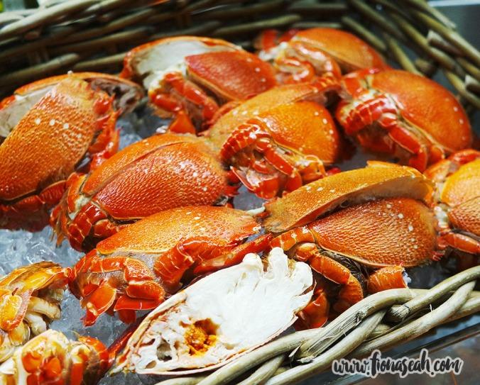 Spanner Rock Crabs