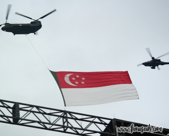 State flag flypast