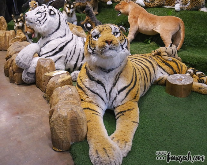 The most docile-looking tiger