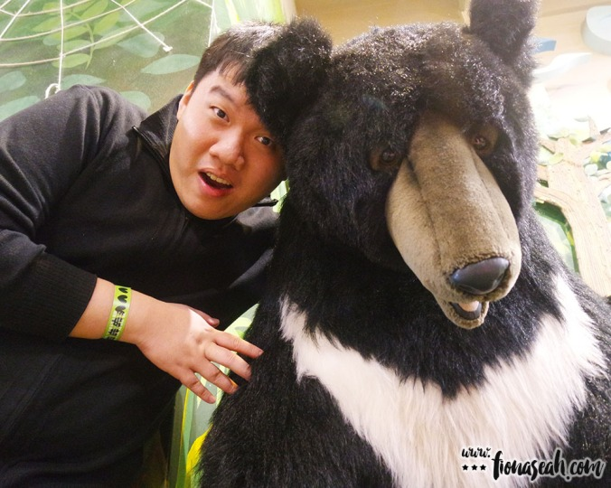 Lifesize bear!